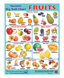 Navneet Fruits Big Wall Chart