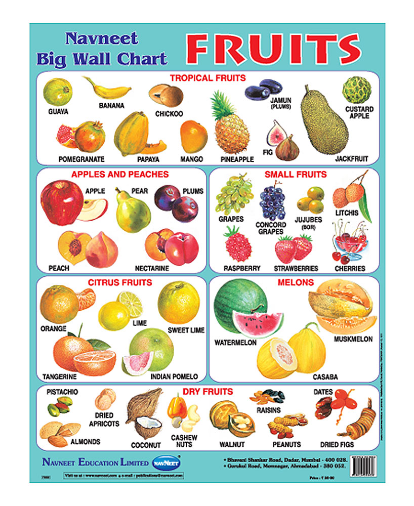 Buy Navneet Fruits Big Wall Chart Online In India