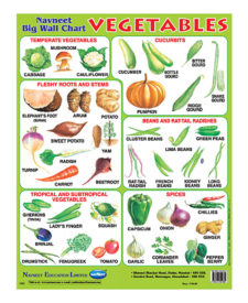 Navneet Vegetables Big Wall Chart