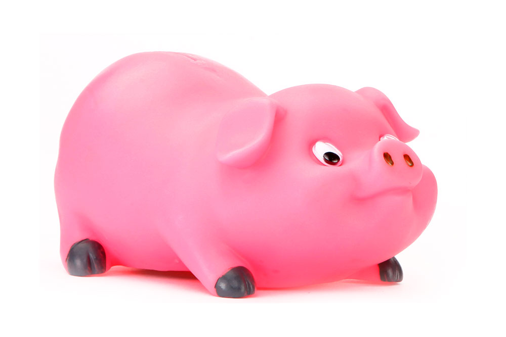 Buy speedage piggy bank mini pink online in india for Mini piggy banks