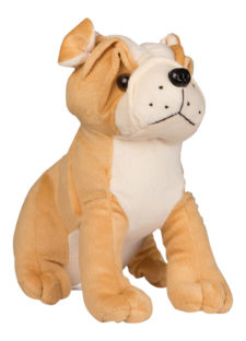 Bull Dog Sitting 20cm Brown