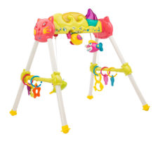 Loving Hut Baby Play Gym