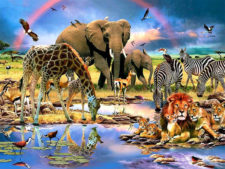 Frank Watering Hole 500 Pcs Jigsaw Puzzle
