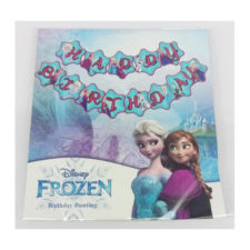 Frozen Movie Happy Birthday Party Bunting Banner