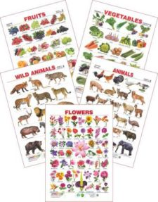 Set of 7 Educational Charts